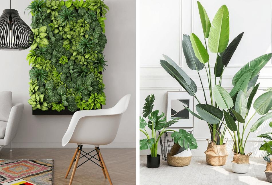 Cuadro de plantas decorativo